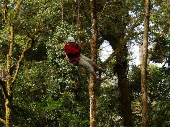 The Original Canopy Tour: Swinging like tarzan