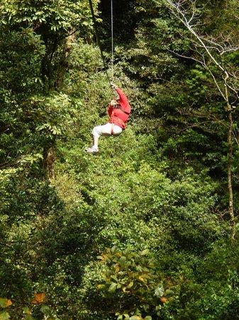 The Original Canopy Tour: Zip lining