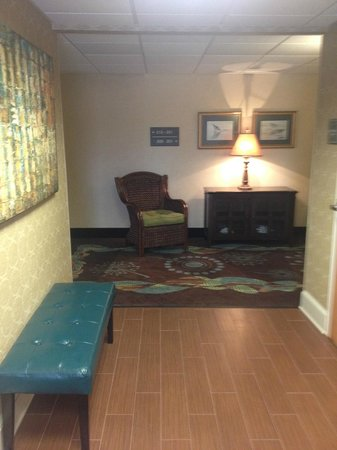 Hampton Inn and Suites Chincoteague-Waterfront: hallway outside of elevators