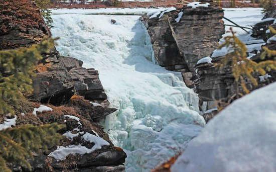 Athabasca Falls: April 18