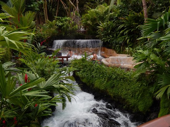 Tabacon Hot Springs: One of the many waterfalls that you can sit under