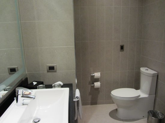 Hilton Garden Inn Santiago Airport : Ensuite - good amenities