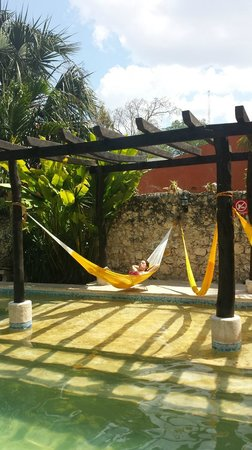 Nomadas Hostel : piscine