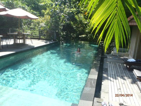 Matahari Cottage Bed and Breakfast : cool pool at Matahari Cottages