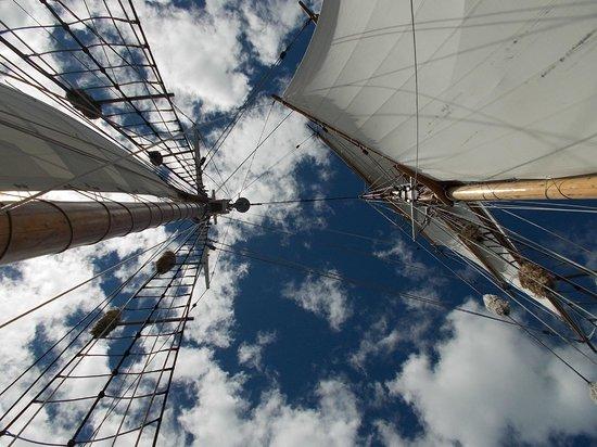 R. Tucker Thompson : Looking skyward