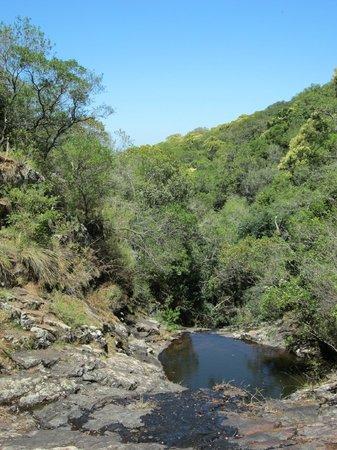 Paseo Sierra de Las Animas: Vista