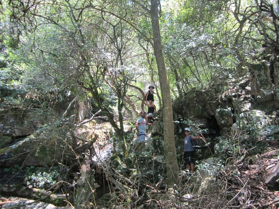 Paseo Sierra de Las Animas: Genial