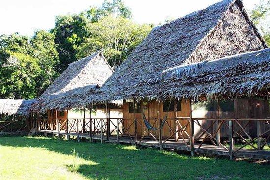 Amazon Camp Lodge: Foto de los bungalows de Amazon Camp
