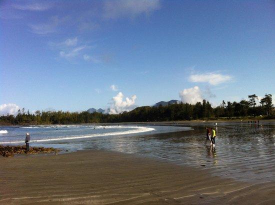 Crystal Cove Beach Resort: MacKenzie Beach