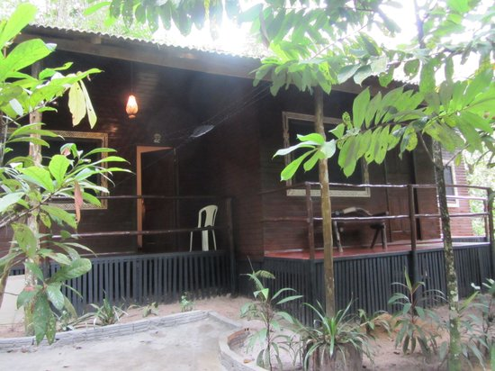 Amazon Ecopark Jungle Lodge : Exterior of cabins
