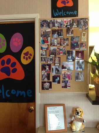 Seabird Lodge - a Signature Inn: Welcome, dogs!