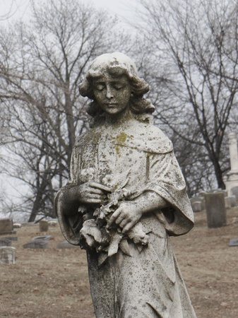 Woodland Cemetery & Arboretum: woodland cemetary