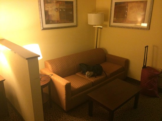 Comfort Suites Huntsville: couch in room