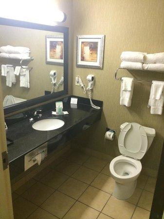 Comfort Suites Huntsville: bathroom