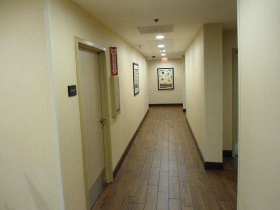 Hampton Inn Orlando Near Universal Blv / International Dr: pasillo