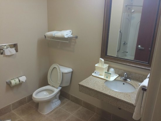 Comfort Inn & Suites: bathroom
