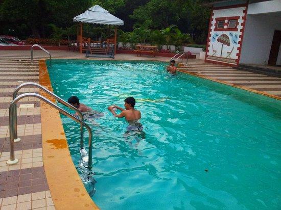 Citrus Chambers Mahabaleshwar: The very clean swimming pool