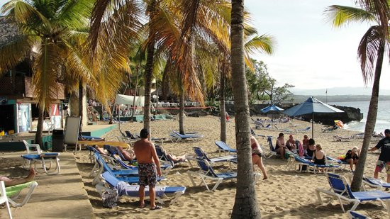 Casa Marina Beach & Reef : middle of beach with volleyball & sunset bar in background