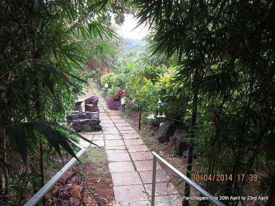 Ravine Hotel: Walkway