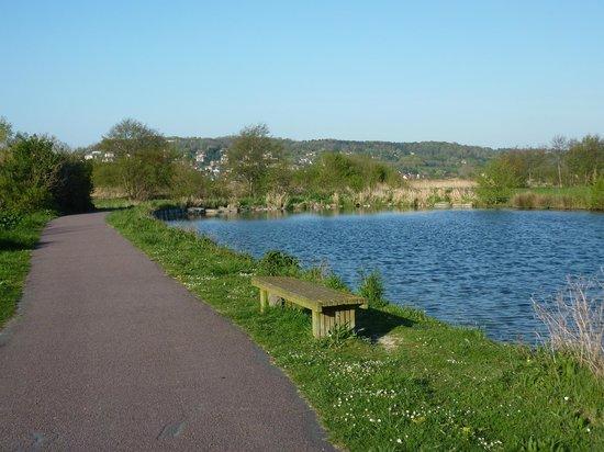 Le Parc Naturel du Marais