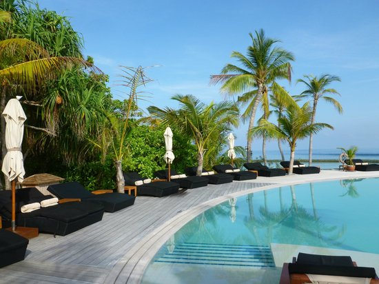 Komandoo Maldives Island Resort: The infinity pool