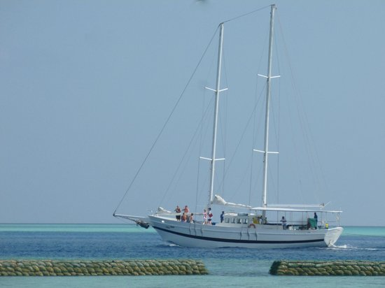 Komandoo Maldives Island Resort: This is the tall ship that took trips