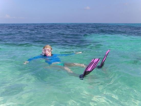 Kuredu Island Resort & Spa : snorkelling in paradise