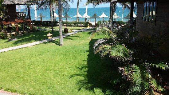 Coco Beach Resort: Blick vom Bungalow (2. Reihe)
