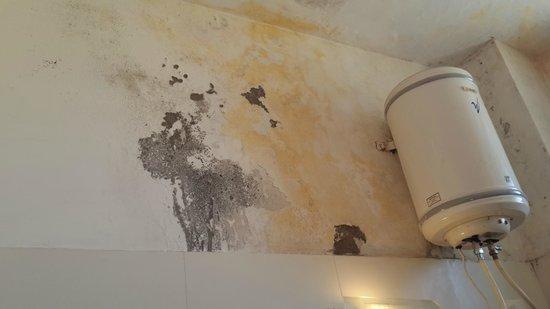 Kasauli Regency Hotel : Bathroom wall...