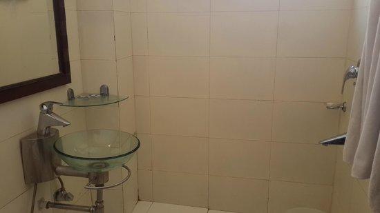 Kasauli Regency Hotel : Bathroom