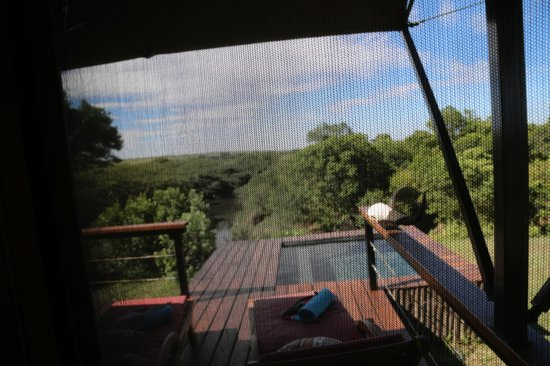 Olare Mara Kempinski Masai Mara: this was the view frm oue room