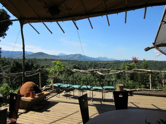 Wild Spirit Lodge and Backpackers: Bar and reception