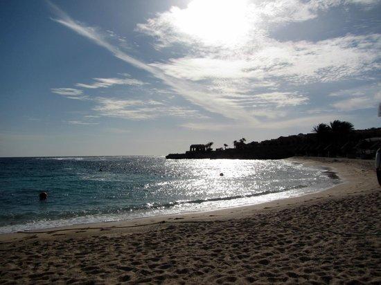 Movenpick Resort El Quseir : Beach