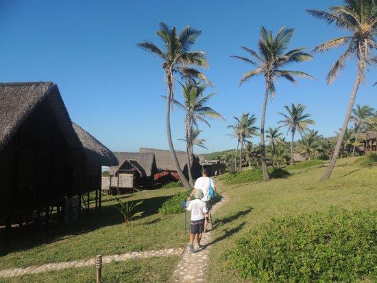 Massinga Beach Lodge: Hotel