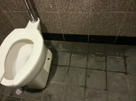 Maxwell's Hotdogs: Toilet is loose in mens restroom, causing bad seal and sewage water on floor