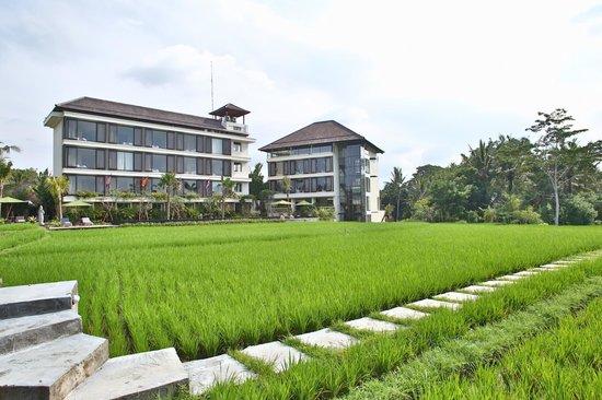 Plataran Ubud Hotel & Spa: вид на отель.