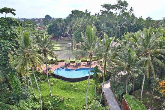 Plataran Ubud Hotel & Spa: Вид с балкона.