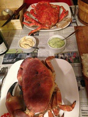 Le Crabe Marteau: Granchi!