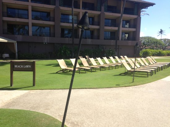 Sheraton Kauai Resort : Lawn are in front of ocean