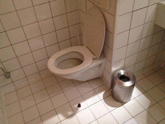 Hotel Mercure Wien Westbahnhof: Toilette hinter Türe