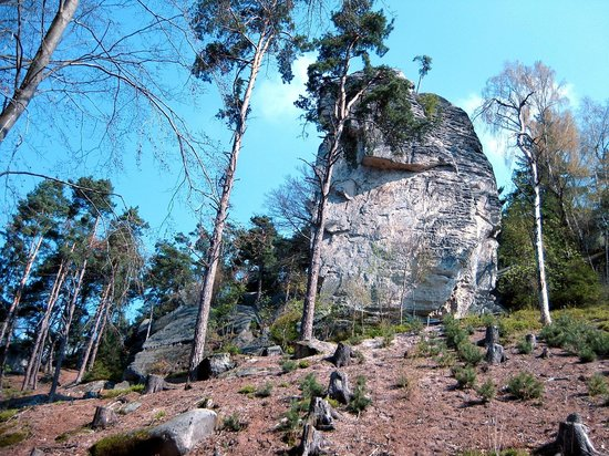 Kost Castle: walk 3 - Prachov Rocks
