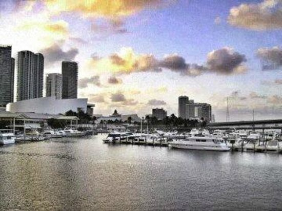 Miami Boat Tours: From The Bay of Biscayne