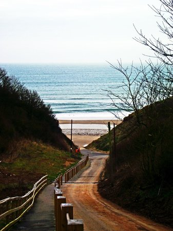 Reighton Sands Holiday Park - Haven: Walk to the beach...Now they have transport for free both there and back.