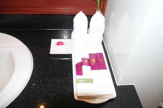 Angkor Miracle Resort & Spa: Basics