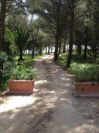 Masseria Panareo5