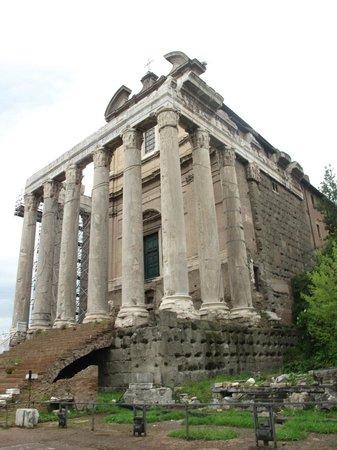 Rome Tours With Kids by Maria Rita: roman forum