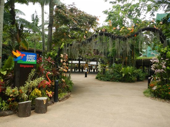 how to go to jurong bird park