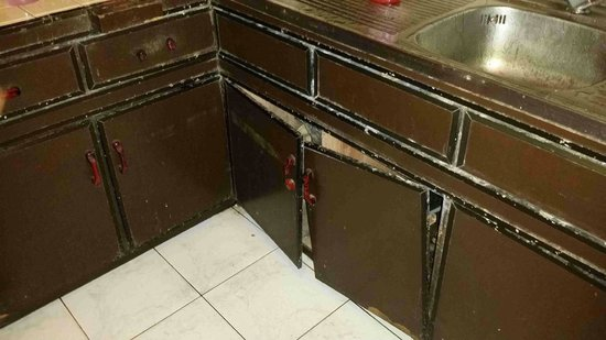 Hotel Silver Falls: broken and old pantry doors