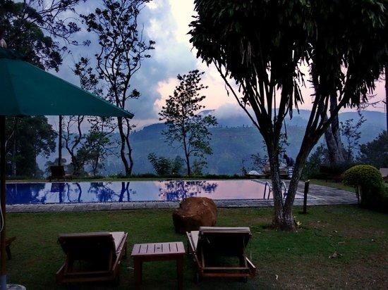 Ceylon Tea Trails : Вечерний вид от бассейна