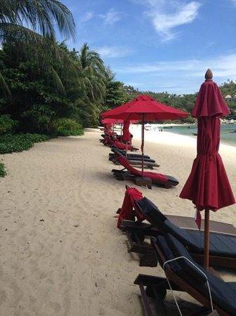 Anantara Rasananda Koh Phangan Villas: Пляж